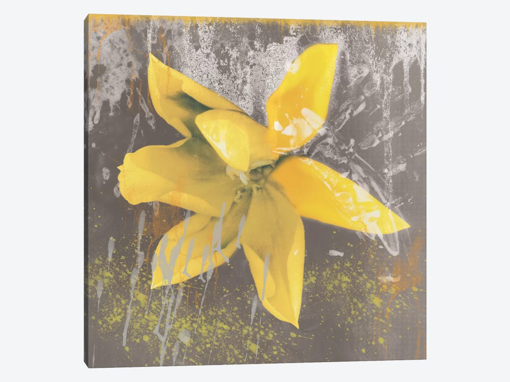 Yellow Tulip Fresco 1-piece Canvas Wall Art