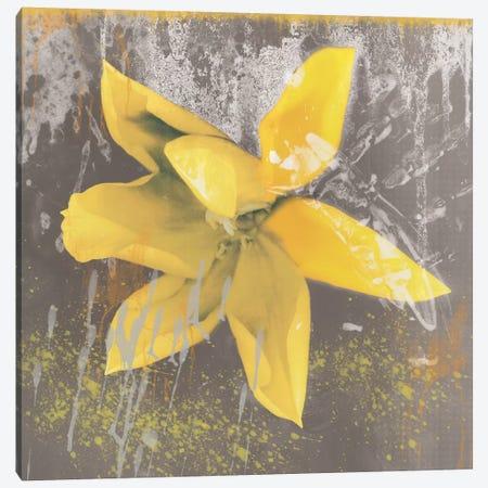 Yellow Tulip Fresco Canvas Print #ECK96} by Erin Clark Canvas Artwork