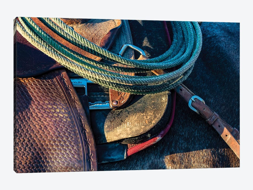 USA, California, Parkfield, V6 Ranch detail of a saddle and lasso by Ellen Clark 1-piece Canvas Art