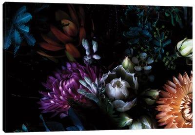Paper Daisies and Blushing Brides Canvas Art Print
