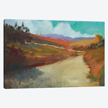 Country Road III Canvas Print #EDD10} by Eddie Barbini Art Print