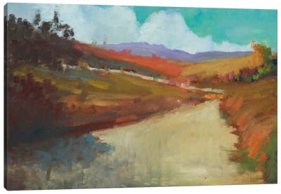 Country Road III Canvas Art Print