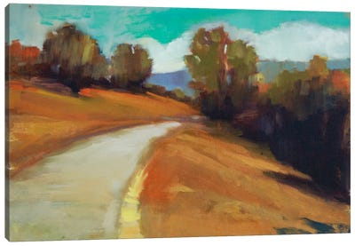 Country Road IV Canvas Art Print
