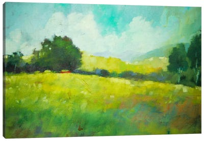 Hillside Canvas Art Print