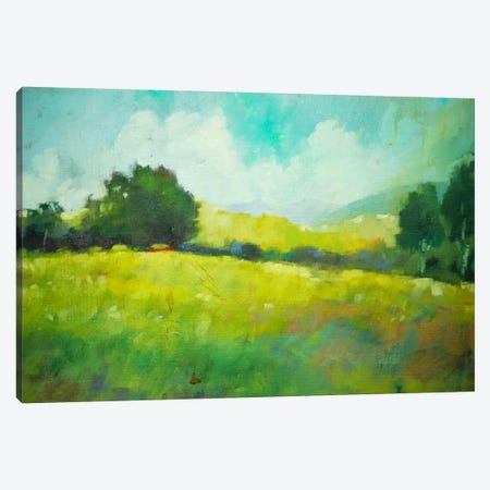 Hillside Canvas Print #EDD16} by Eddie Barbini Canvas Art