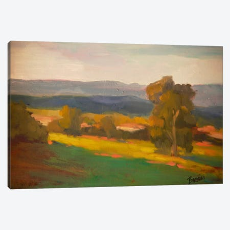 Hillside Hideaway Canvas Print #EDD17} by Eddie Barbini Canvas Art
