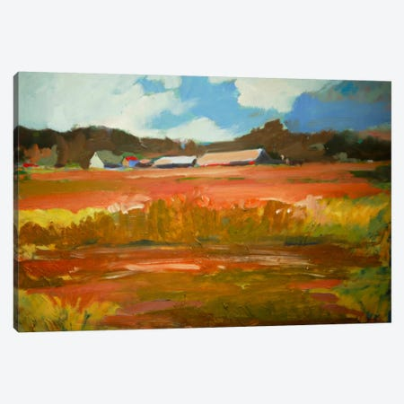 In The Fields Canvas Print #EDD19} by Eddie Barbini Art Print