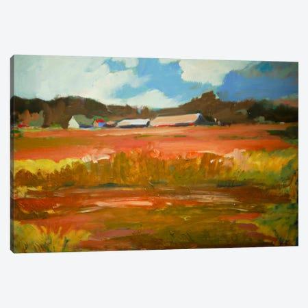 In The Fields Canvas Print #EDD19} by Eddie Barbini Art Print