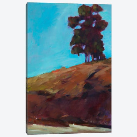 Lone Tree Canvas Print #EDD22} by Eddie Barbini Canvas Wall Art