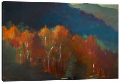 Autumn Forest Canvas Print #EDD3