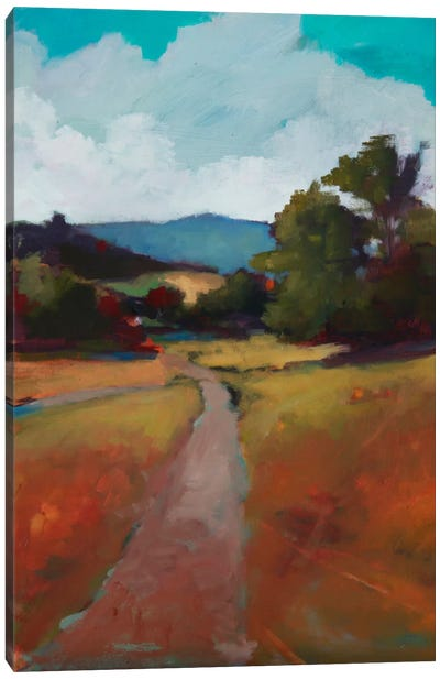 Country Road II Canvas Art Print