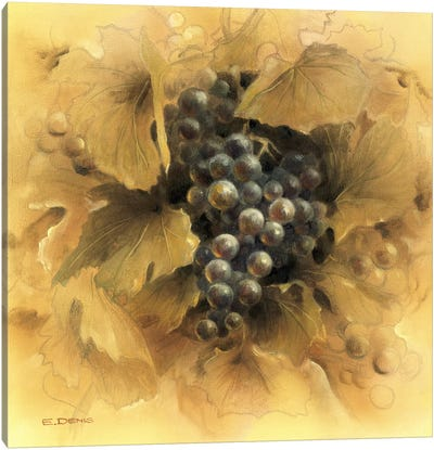 Grapes II Canvas Art Print