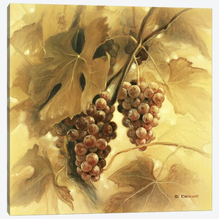 Grapes III Canvas Print #EDE7} by E Denis Canvas Art Print