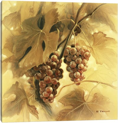 Grapes III Canvas Art Print
