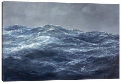 The Gull's Way Canvas Art Print