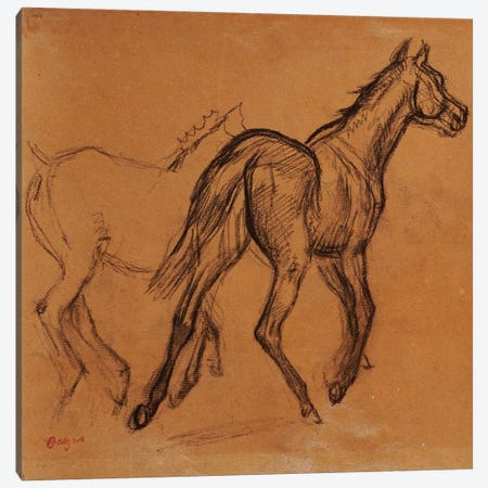 Horses, c.1882  Canvas Print #EDG35} by Edgar Degas Art Print