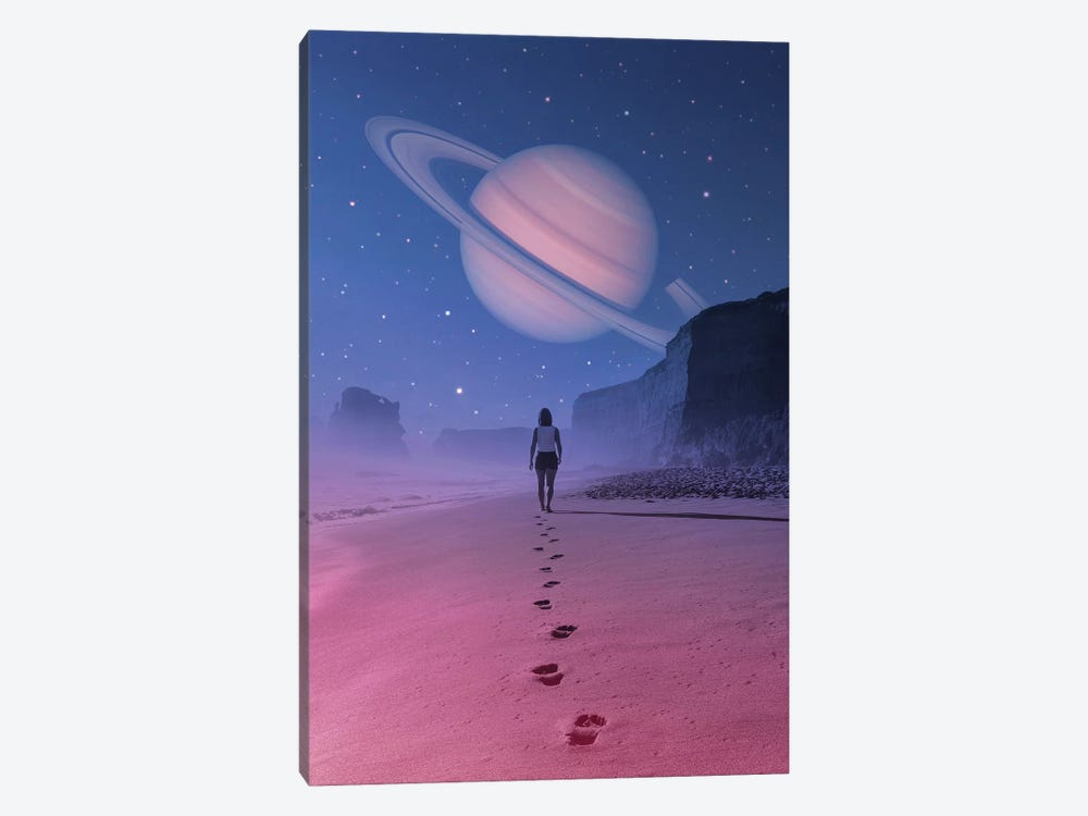 Glimpse Of A Dream 1-piece Canvas Wall Art