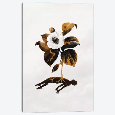 The Haunting Fragility Of Life Canvas Print #EDI61} by Enkel Dika Canvas Art Print