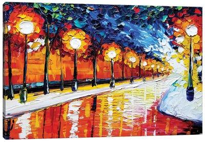 Path Canvas Art Print