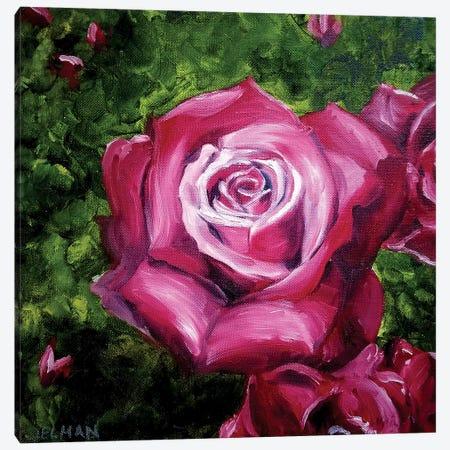 Rose Canvas Print #EDL38} by Kelly Edelman Canvas Print