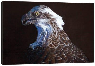Fleck II Canvas Art Print