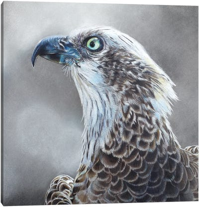 Fleck Canvas Art Print