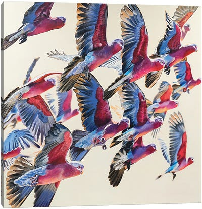 Joyful Flight, Sunlight Canvas Art Print