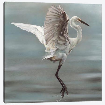 Lift Off Canvas Print #EDM30} by Sally Edmonds Canvas Art