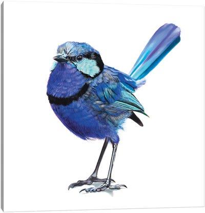 Moody Blue Canvas Art Print