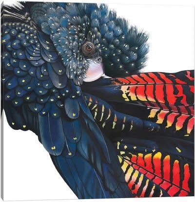 Pretty Miss Polly Canvas Art Print