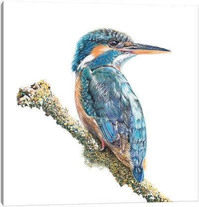 River Queen Canvas Art Print