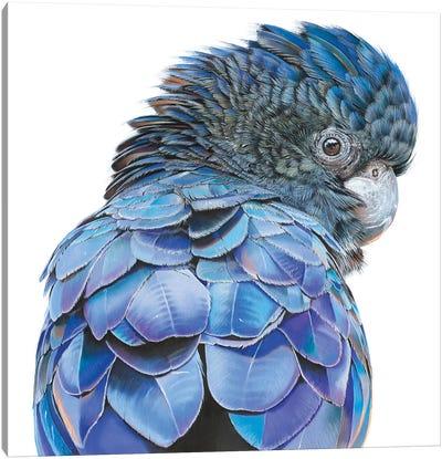 Big Blue Canvas Art Print
