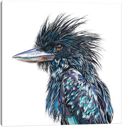 Black Kookaburra Canvas Art Print