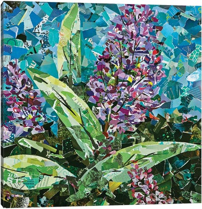 Afternoon At Kula Gardens Canvas Art Print