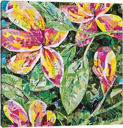 Maui Charmer Canvas Art Print