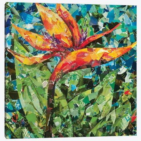Paradise Canvas Print #EDO9} by Eileen Downes Canvas Wall Art