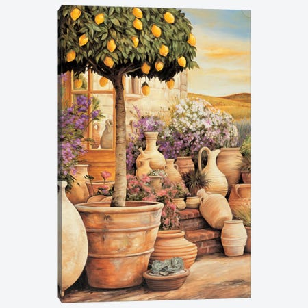 Lemon Topiary Canvas Print #EDU4} by Eduardo Canvas Wall Art
