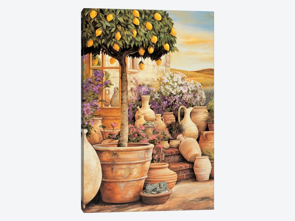 Lemon Topiary by Eduardo 1-piece Canvas Print