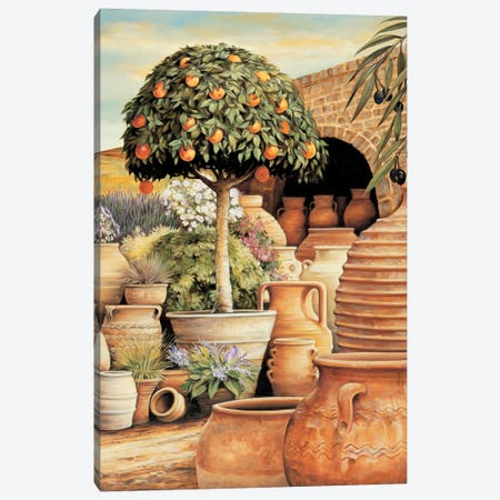 Orange Topiary Canvas Print #EDU6} by Eduardo Canvas Wall Art