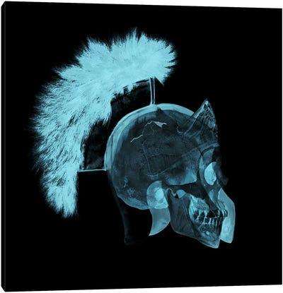 Skull Gladiator Canvas Art Print