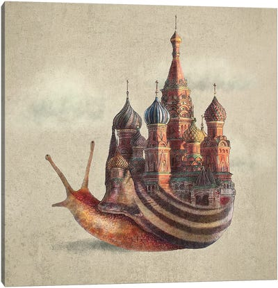 The Snail's Daydream Canvas Art Print