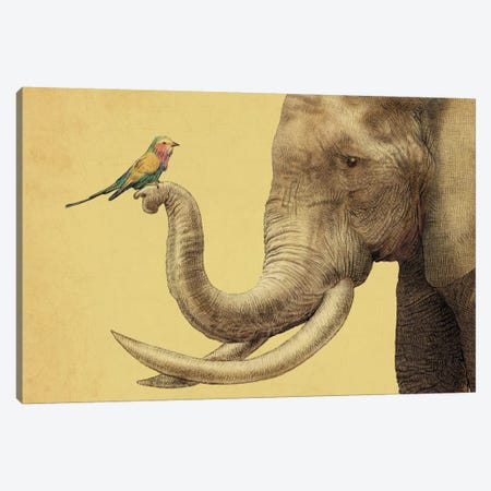 A New Friend Canvas Print #EFN24} by Eric Fan Canvas Artwork