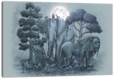 Midnight in the Stone Garden Canvas Print #EFN2