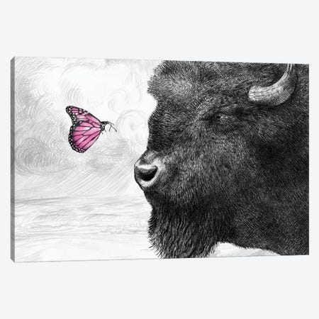 Bison and Butterfly Canvas Print #EFN31} by Eric Fan Canvas Artwork