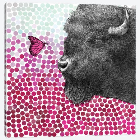 Bison and Butterfly I Canvas Print #EFN40} by Eric Fan Art Print