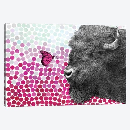 Bison and Butterfly II Canvas Print #EFN41} by Eric Fan Canvas Art Print