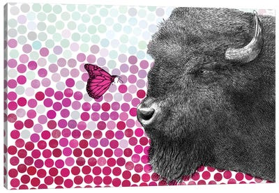 New Friends Series: Bison and Butterfly II Canvas Art Print