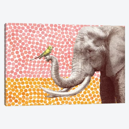 Elephant and Bird II Canvas Print #EFN43} by Eric Fan Canvas Print