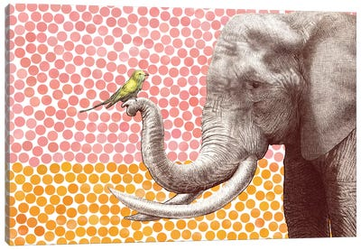 New Friends Series: Elephant and Bird II Canvas Art Print