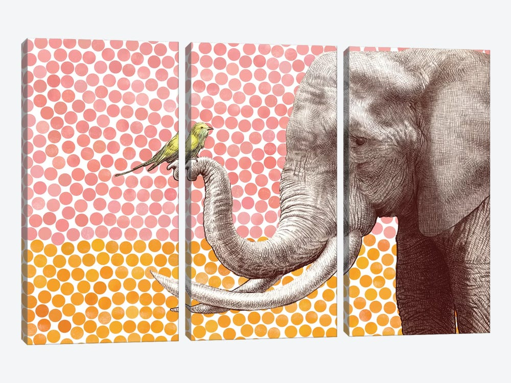 New Friends Series: Elephant and Bird II by Eric Fan 3-piece Canvas Art